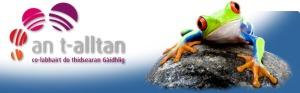 an-t-alltan-header2014